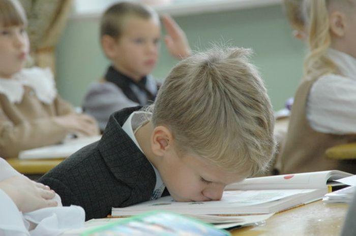 Знания из школьной программы, которые мы никогда не забудем (9 фото)