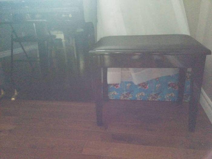 Братья сделали запоминающийся подарок младшей сестре (19 фото)