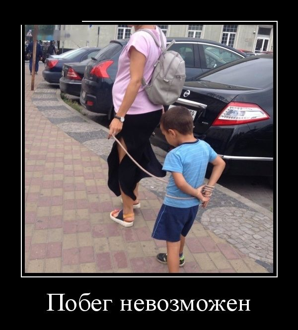 http://trinixy.ru/pics5/20160908/demotivatory_11.jpg