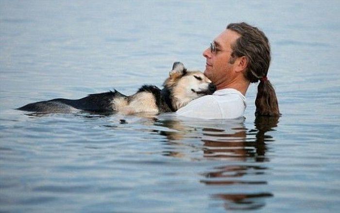 Трогательные истории о человеческой доброте (19 фото)
