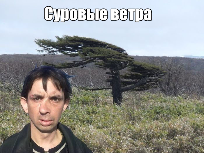 http://trinixy.ru/pics5/20160908/podborka_vecher_04.jpg