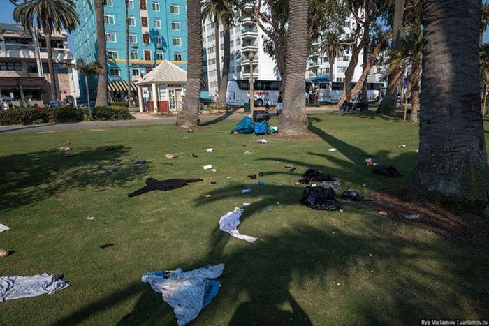 Почему в США так много бездомных (22 фото)