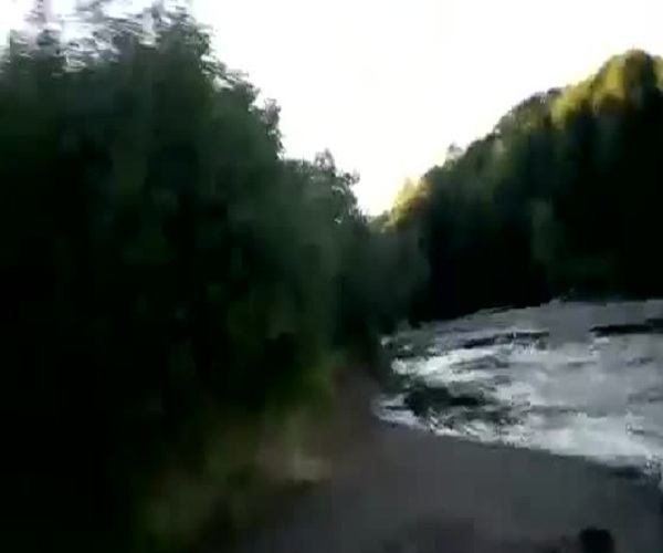 В Амурской области турист погонялся за медведями
