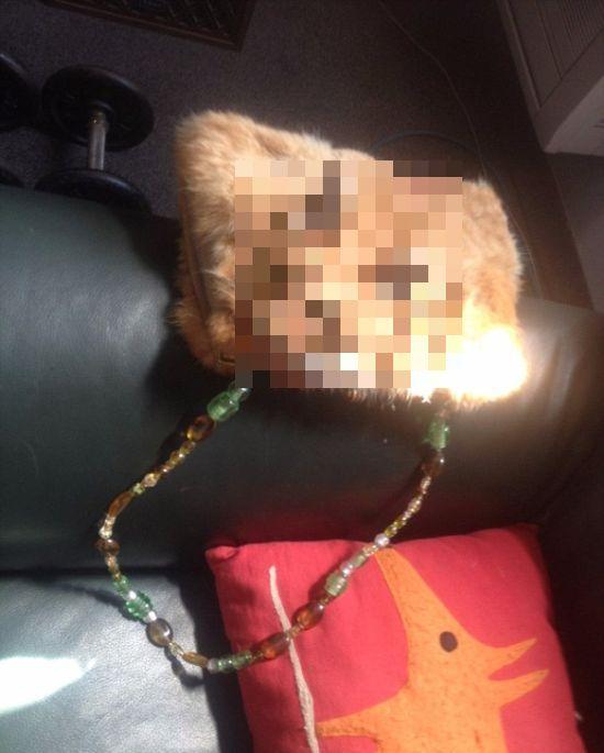 Сумка из кошки за 1400 долларов (3 фото)