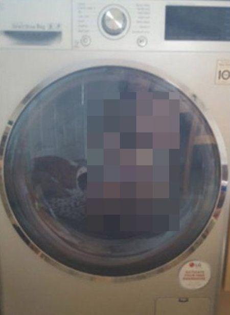 Невнимательная хозяйка стиральной машины отправила в сеть интимное фото (фото)