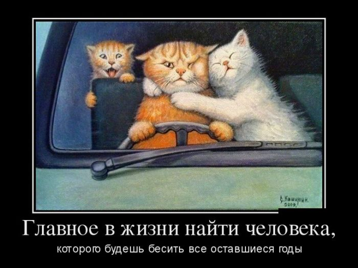 http://trinixy.ru/pics5/20160922/demotivatory_01.jpg
