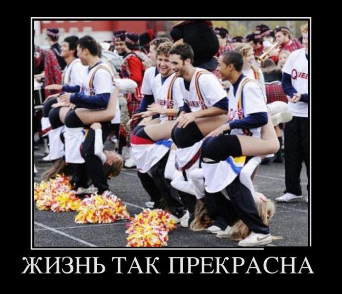 http://trinixy.ru/pics5/20160922/demotivatory_06.jpg