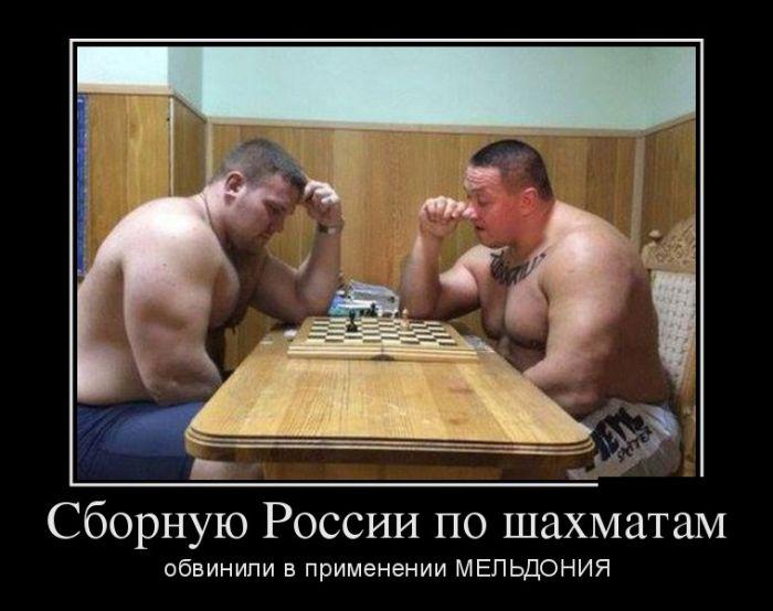 http://trinixy.ru/pics5/20160922/demotivatory_19.jpg