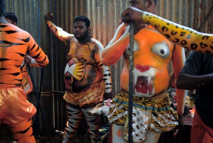 Тигриный фестиваль Пули Кали в Индии (12 фото)