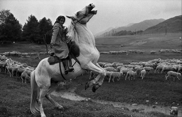 Подборка редких фотографий со всего мира. Часть 78 (40 фото)
