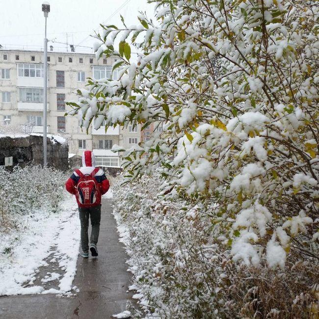 В Магадане и области выпал снег (18 фото)