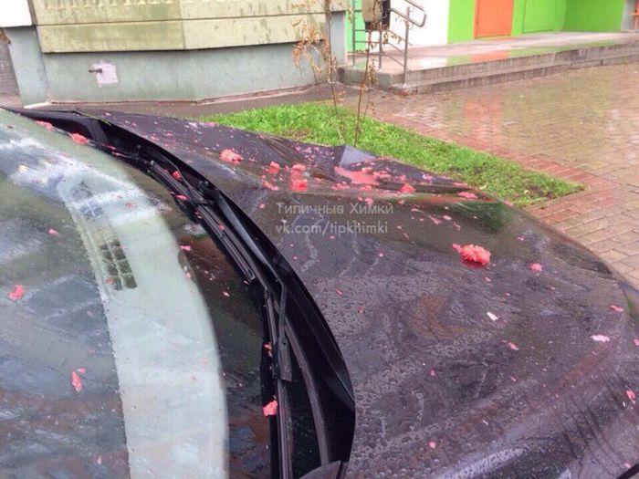 Арбузное наказание за парковку на тротуаре (4 фото)