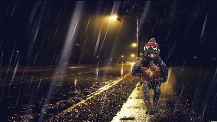 Шагающий ястреб стал героем фотожаб (45 фото)