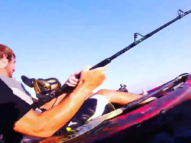 Бесстрашные рыбаки встретились с акулой