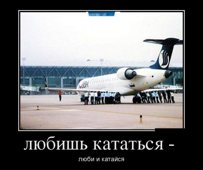 http://trinixy.ru/pics5/20161006/demotivatory_05.jpg