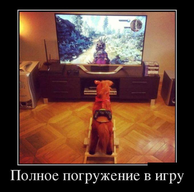 http://trinixy.ru/pics5/20161006/demotivatory_08.jpg