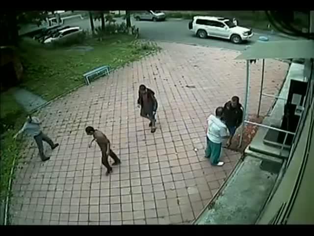 Во Владивостоке мужчина избил ветеринара мертвой кошкой