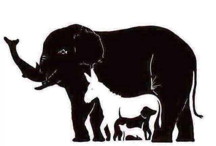 Сколько животных вы видите на этой картинке? (2 картинки)
