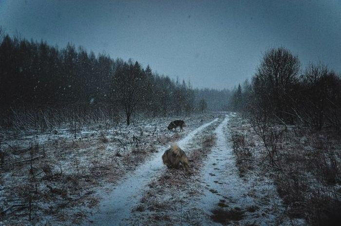 Непредсказуемая погода Северо-Запада России (2 фото)