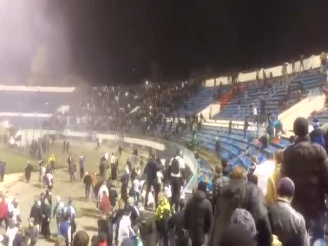 Беспорядки фанатов на матче «Факел» - «Динамо»