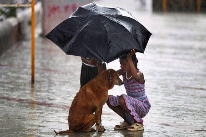 Благородные поступки добрых людей (28 фото)