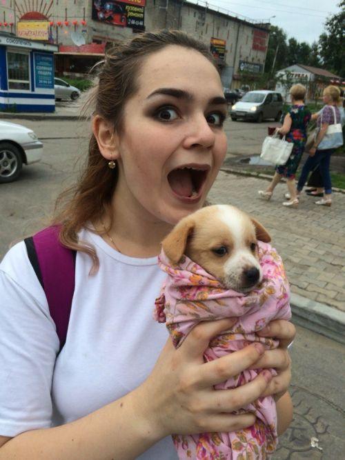 Пользователи сети рассказали о хабаровских живодерках, забиравших животных из приютов (8 фото)