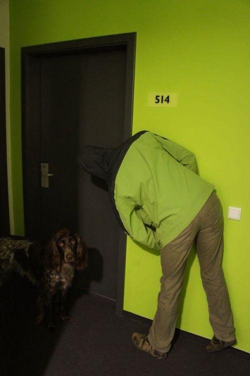 Мастера маскировки (28 фото)