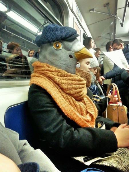Забавные фото из общественного транспорта (34 фото)