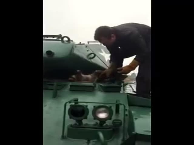 Военный спас енота, застрявшего в танке