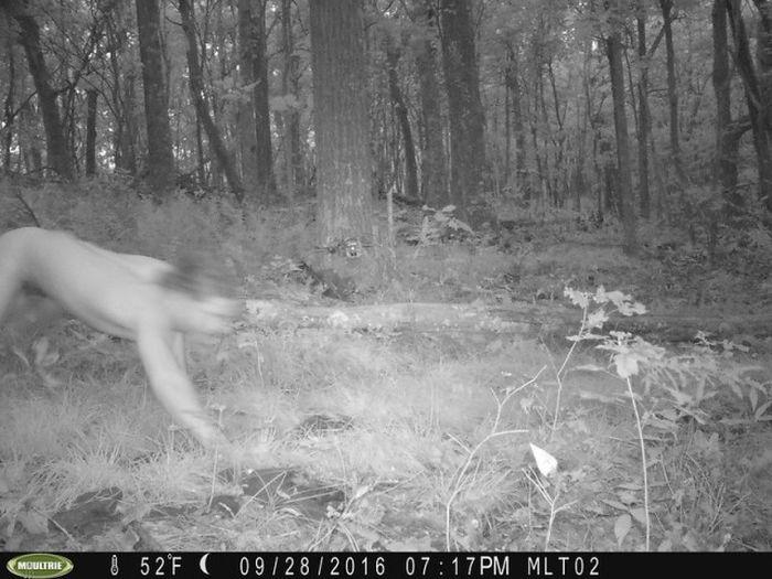 Камеры наблюдения за животными сделали странные снимки (2 фото)