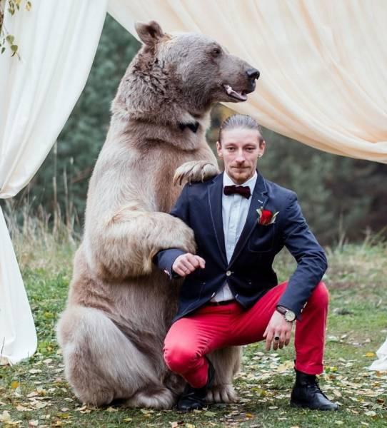 Креативная свадебная фотосессия (11 фото)
