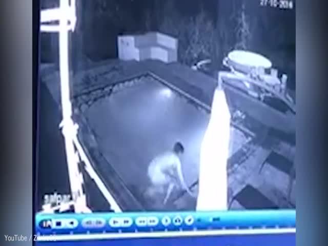 Крокодил залез в бассейн к купающимся