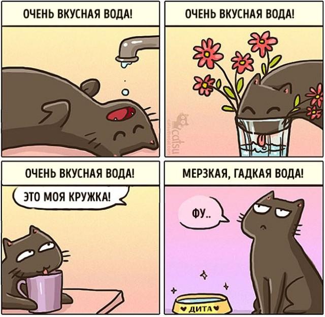 Как меняется жизнь с появлением в доме кота (20 картинок)