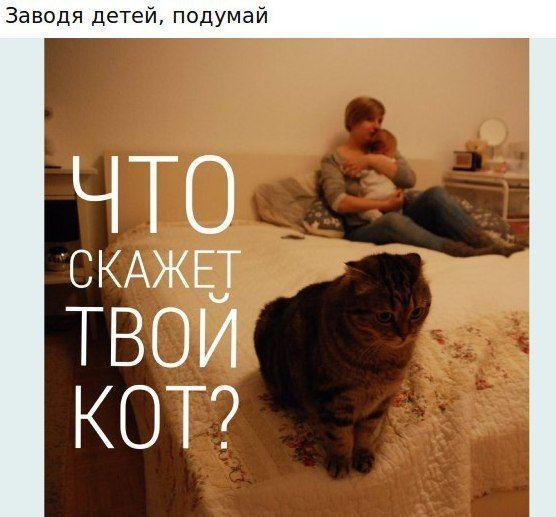 http://trinixy.ru/pics5/20161102/podborka_vecher_28.jpg