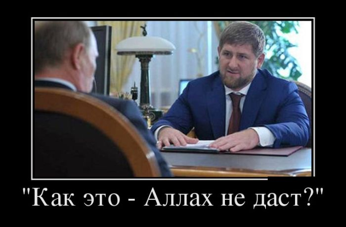 http://trinixy.ru/pics5/20161103/demotivatory_01.jpg