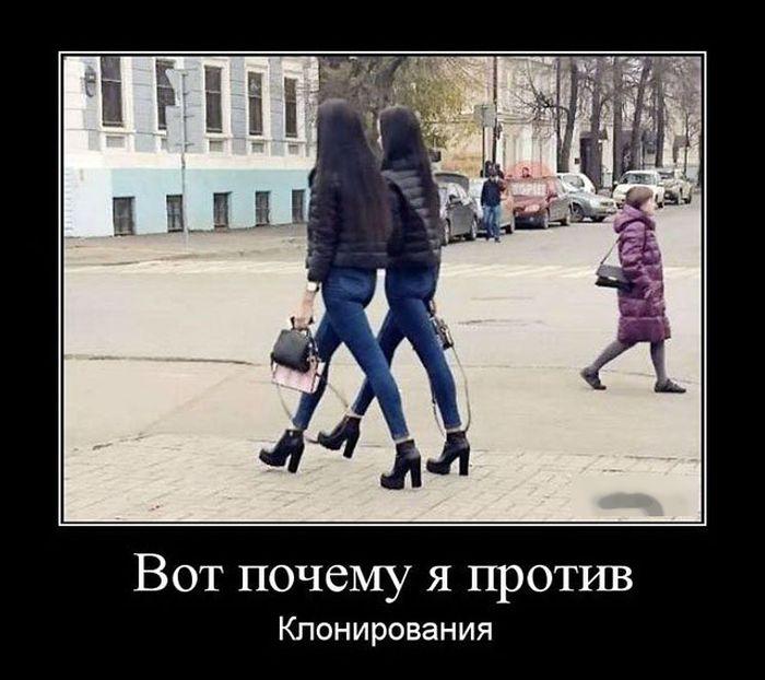 http://trinixy.ru/pics5/20161103/demotivatory_22.jpg