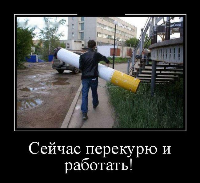 http://trinixy.ru/pics5/20161104/demotivatory_06.jpg