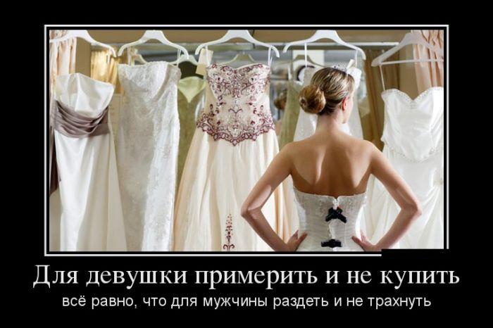 http://trinixy.ru/pics5/20161104/demotivatory_12.jpg