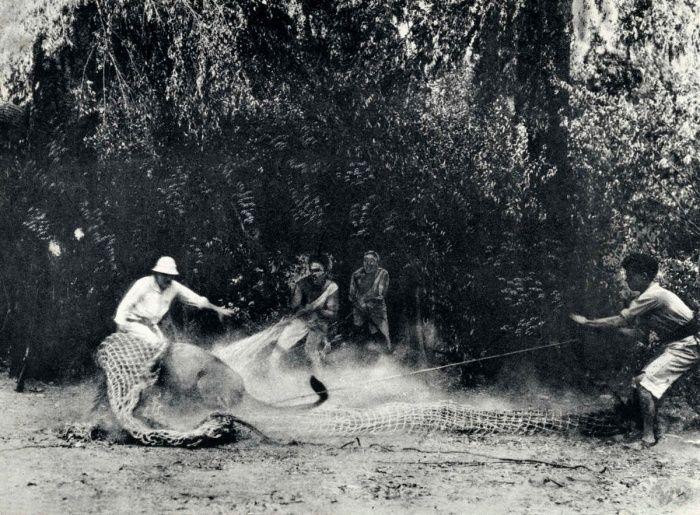 Подборка редких фотографий со всего мира. Часть 83 (30 фото)