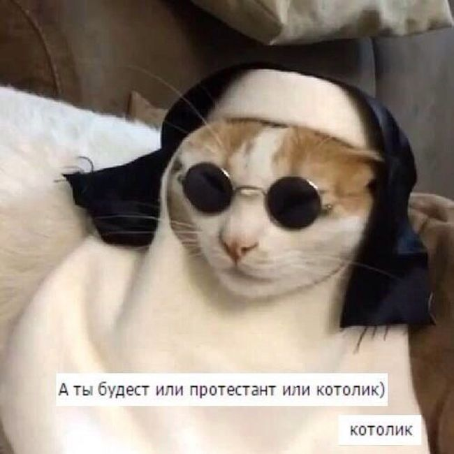 http://trinixy.ru/pics5/20161104/podborka_vecher_16.jpg