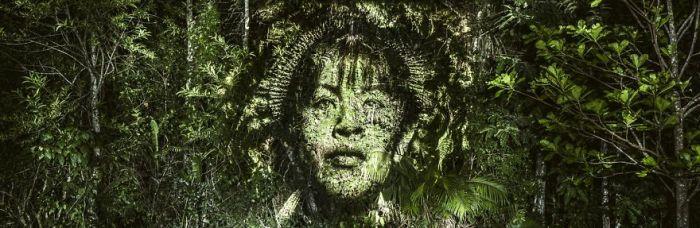 «Световые граффити» в тропическом лесу (9 фото)