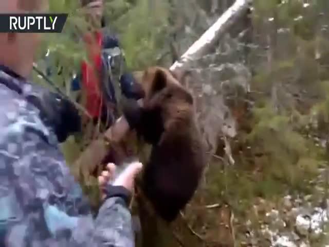 Охотники спасли медвежонка