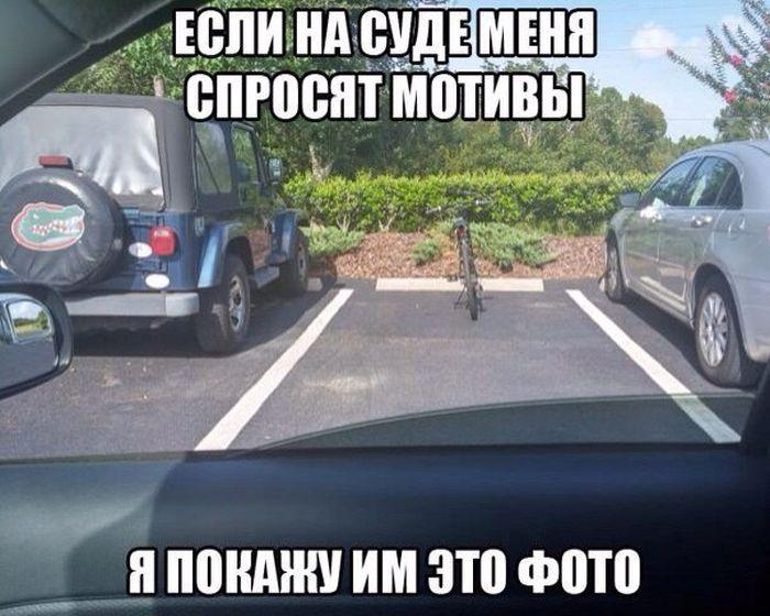 http://trinixy.ru/pics5/20161110/podborka_dnevnaya_29.jpg
