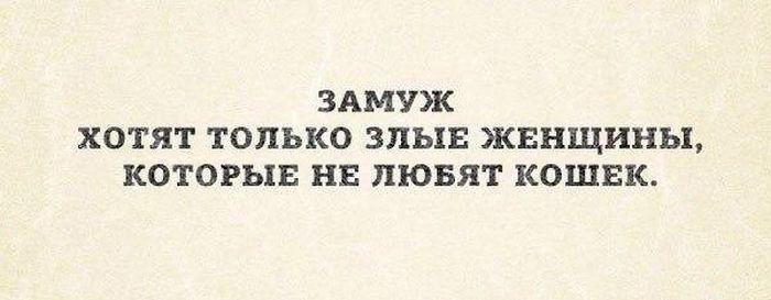http://trinixy.ru/pics5/20161110/podborka_vecher_08.jpg