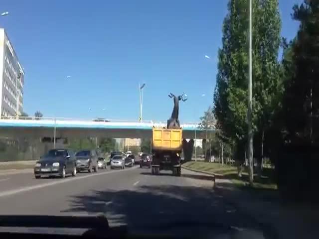 Невнимательный водитель уронил статую