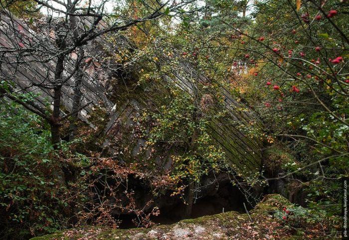 Лагерь дождевого червя - немецкое фортификационное сооружение на западе Польши (28 фото)