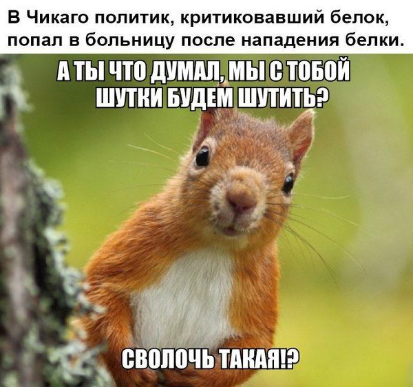 http://trinixy.ru/pics5/20161124/podborka_vecher_22.jpg