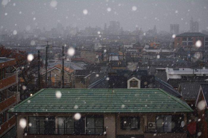 В Токио впервые за 54 года первый снег выпал в ноябре (11 фото)