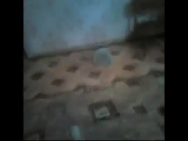 Дачные воры снимали на видео совершенные ограбления