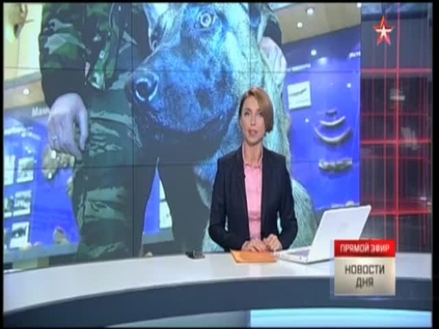 Телеканал «Звезда» показал возможные проблемы клонирования инсценированной потасовкой